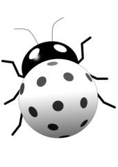 floorball bug
