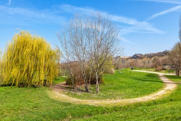 Tanaro park spring view.