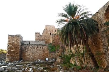 Byblos Crusader Castle on white background