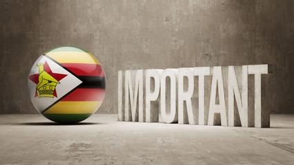 Important Zimbabwe Concept