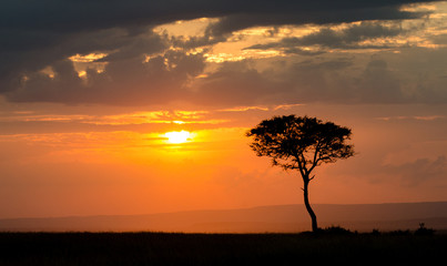 Sunset over Masai Mara National Reserve, Kenya, Africa