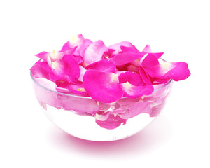 Petals of pink roses in glass bowl with water