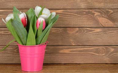 Tulips in pink bucket