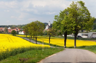 road with village , lime trees and rapeseed field