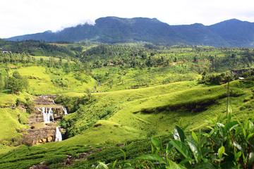 Водопад Сент Клер и чайные плантации, Шри-Ланка