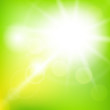Nature sunny abstract summer background - 77817763