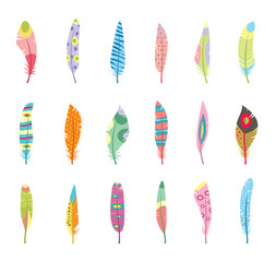 Vector Set of Stylized or Abstract Feathers and Feather