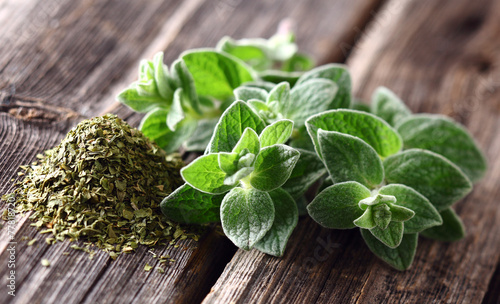 Oregano spices - 77818720