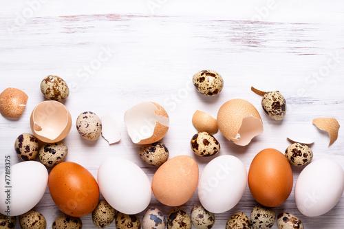 canvas print picture Eggs