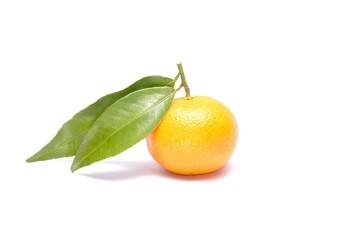 Mandarin or Tangerine fruit on white background