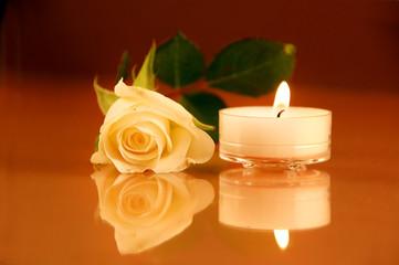 Teelicht mit weißer Rose