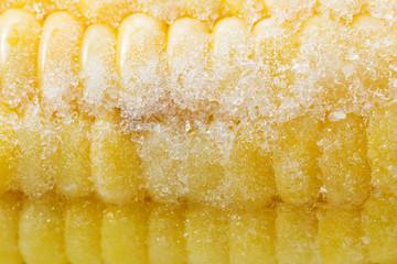 Macro texture of a cob of frozen corn