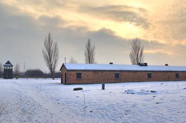 The Auschwitz-Birkenau State Museum