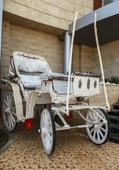 Traditional horse white car