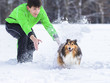 junger Mann spielt mit Hund (Shetland Sheepdog) im Schnee