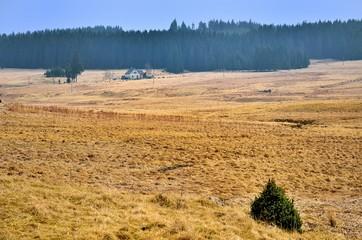 Hochebene im Erzgebirge bei Prebuz, Tschechien