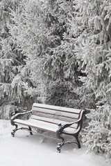 Snow-covered bench in city park