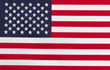Flag of United States of America - 77835127