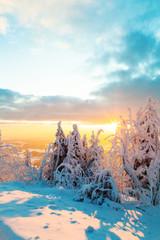 Snowy winter landscape in sunset