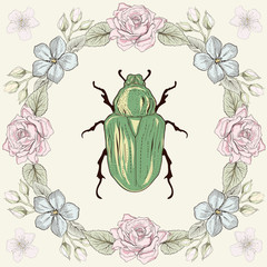 Floral frame and beetle