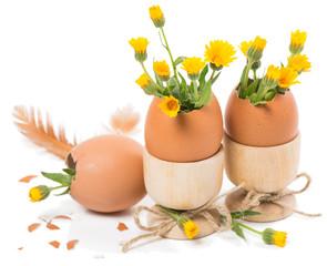 Easter eggs in eggcups