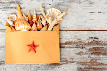 Sea concept composition with sea shells in envelope
