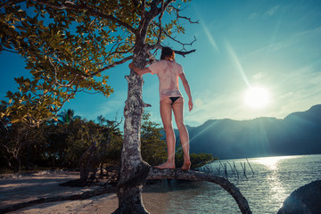 Woman climbing tree on tropical beach