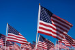 A display of American flags with a sky background - 77850587