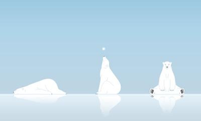 シロクマと雪