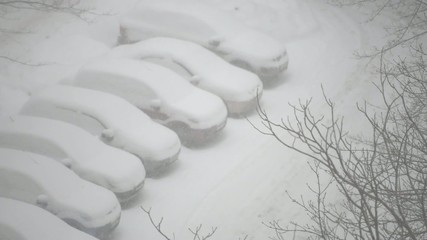Cars covered in snow in the residential area during snowfall