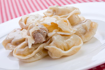 Russian traditional food dumpling with meat