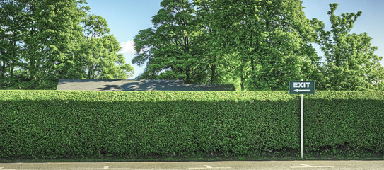 Exit and Hedge