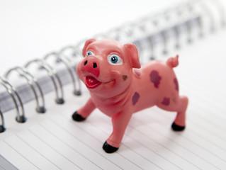 cochon tirelire économies sur cahier a spirales