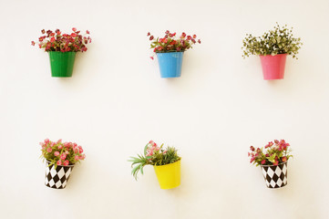 colorful flowers pots hang onto the wall