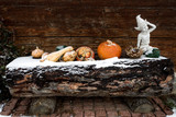 pumpkins lying on wooden log covered by snow