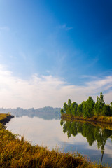 Lake in the morning.