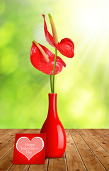 Red Anthurium flower in vase and Valentines card