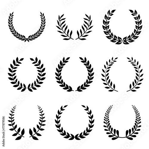 Vector Collection of Laurels, Floral Elements and Banners - 77879586