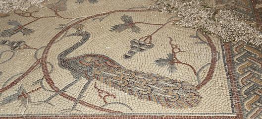 Ornate floor mosaics at the Basilica of Moses,Jordan