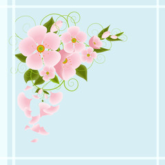 Floral pattern spring background