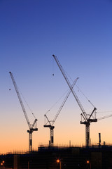 Many cranes at Australian construction site