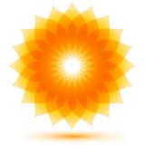 Beautiful sunflower icon, shape - 77881958