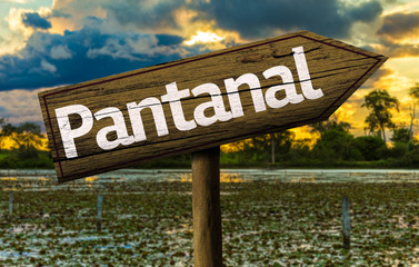 Amazing landscape with Pantanal Sign