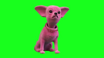pink Chi-hua toy dog accessory for cars Green Screen