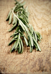 toning effect sprigs of rosemary on a wooden board closeup verti