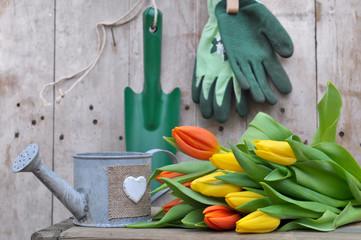 bouquets de tulipes et accessoires de jardinage