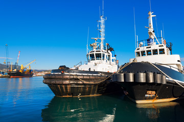 Two Tugboats and Containers Ship