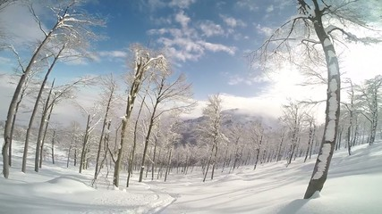 skiing in powder snow in a mountain forest. POV