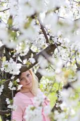 beauty girl sakura spring