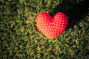 Heart on green grass background